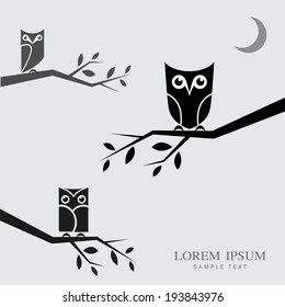 Vector image of an owls perched on branches with place for your text.
