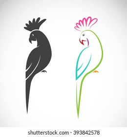 Vector image of a parrot design on white background, Vector parrot for your design,