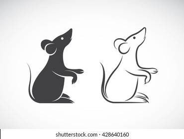 Vector image of an rat design on white background, Vector rat for your design.
