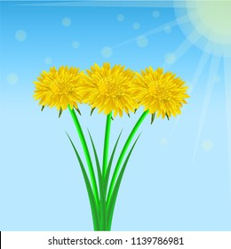Vector image of a realistic flower bouquet of a dandelion