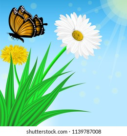 Vector image of realistic flowers of chamomile and dandelion in grass and a flying butterfly. Greeting card with a summer day