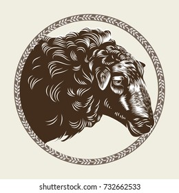 Vector image of a sheep's head in the style of engraving. Agricultural vintage emblem. Logo illustration