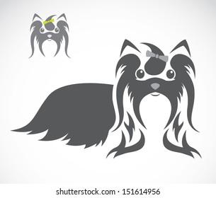 Vector image of a shih tzu dog