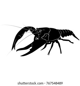 Vector image of silhouette of crawfish