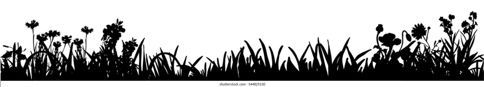 vector image of silhouette of grass and plants