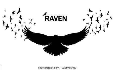 Vector image of a silhouette of a raven on a white background. Wall sticker concept illustration.