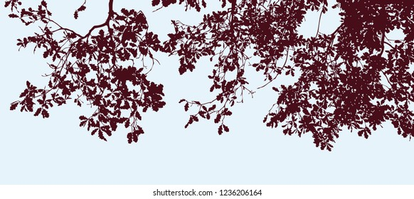 Vector image of silhouettes of oak branches in autumn