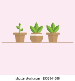 a vector image three potted plants in brown and green color in flat design on a slightly pinkish background looks clean and cute