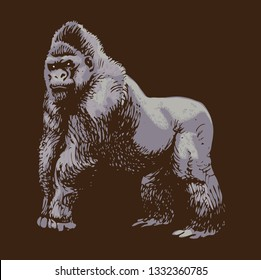 vector image of a wild big gorilla in the style of art outline on a dark background