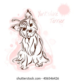 vector image Yorkshire Terrier watercolor background