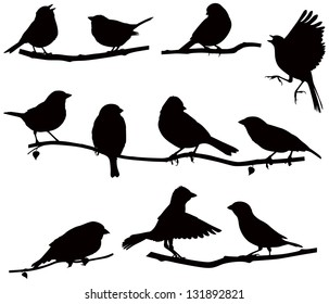 Vector images silhouettes of birds on a branch/ Silhouettes bird on a branch