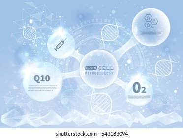 Vector infographics scientific development background. Genetic cosmetics Hyaluronic Acid Research