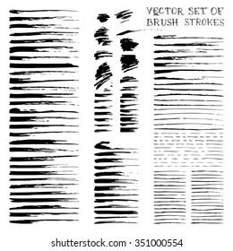 Vector ink brush flourishes. Set of various black strokes isolated on white background.