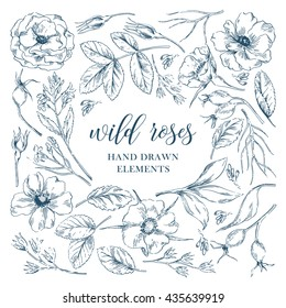 Vector ink graphic wild rose floral hand drawn elements collection with leaves and flowers. Decorative floral set for fabric, textile, wrapping paper, card, invitation, wallpaper, web design.