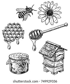 Vector ink hand drawn honey set. Honeycombs with honey, hive, bee, wooden stick, flower, honey jar. Sweet natural organic honey vintage sketch illustration.