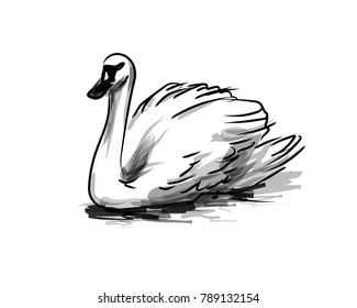 Vector ink sketch swan