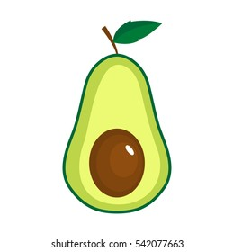 Vector isolated avocado on white background