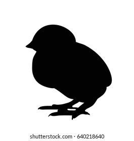Vector, isolated, black silhouette of a chicken