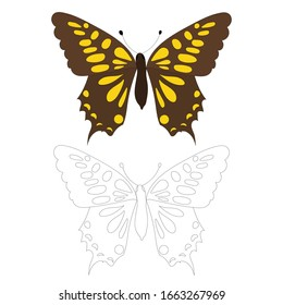vector, isolated, butterfly, coloring book