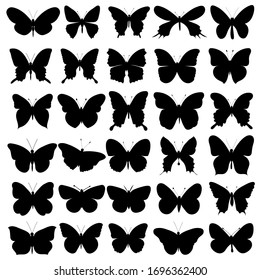 vector, isolated, butterfly silhouettes set, collection