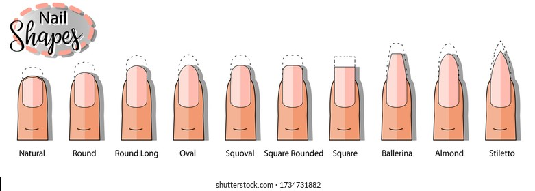 Vector isolated collection  of nail types with an inscription. Flat vector. Manicure. Oval, square, round,  shapes.