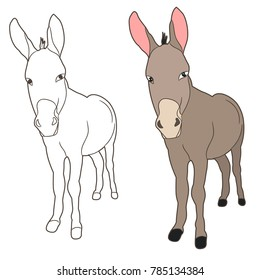 vector isolated donkey, mule, outline