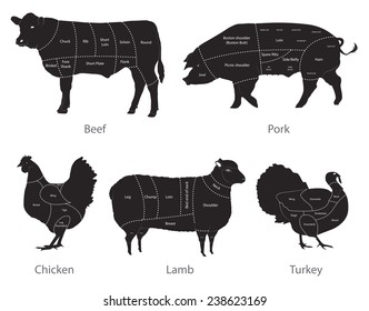 vector isolated farm animals with meat cuts lines