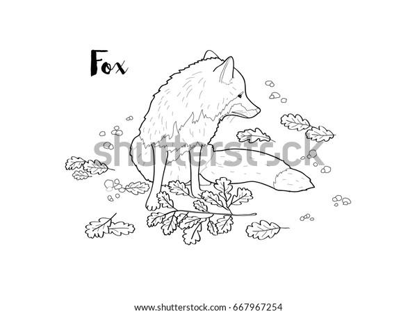 Vector Isolated Fox Coloring Book Page | Animals/Wildlife ...