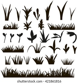 vector , isolated grass silhouettes on the white background,silhouette shoots