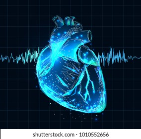 Vector isolated heart. Low poly wireframe and points. Polygonal 3D human organ on dark blue background. Medicine concept with geometry triangle. Abstract heart pain mash line
