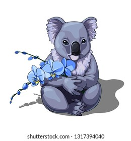 Vector isolated illustration of a cute coala holding blue orchids