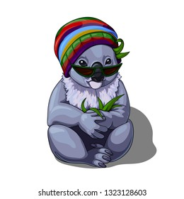 Vector isolated illustration of a cute coala wearing multicolored hat and sunglasses and holding eucalyptus leaves