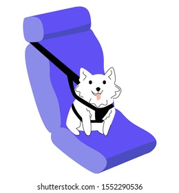 Vector isolated illustration with dog in car, which is securely fastened with special seat belts. Concept of safe travel with animals. Advertising, web design, printing and other products can be used.