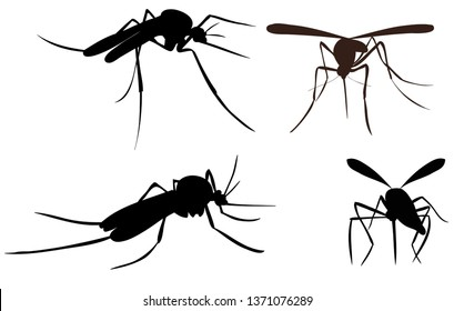vector, isolated, mosquito silhouette, insect, flying, set