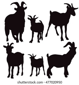 vector, isolated on white background silhouette of a goat, a set of