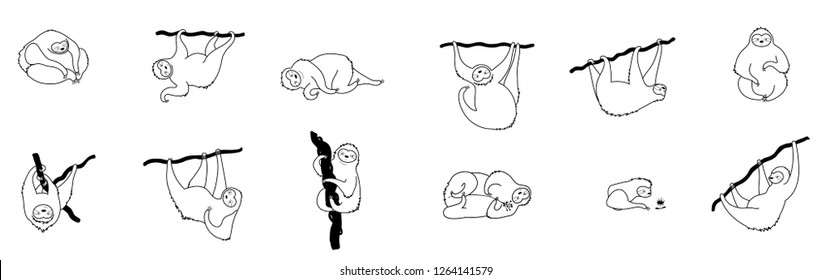 Vector isolated outline black set of cute character sloth illustration. Cartoon baby climbing sloths. Hand drawn jungle animal hanging on a branch of tree. Drawing for print, fabric, poster etc.