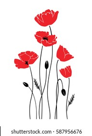 vector isolated poppies