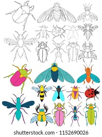 vector, isolated, set insects book coloring