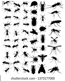 vector, isolated, set of silhouette beetles, ants, mosquitoes