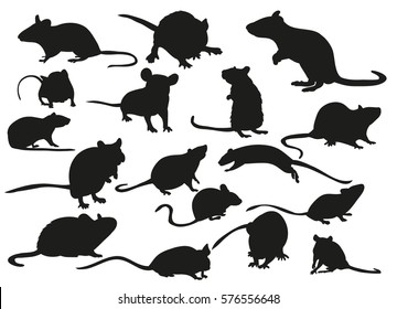 vector, isolated, set of silhouettes Mouse Rat