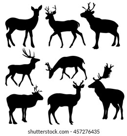 vector, isolated, silhouette deer on white background, set, black