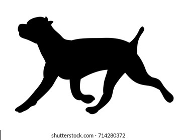 vector, isolated silhouette dog running
