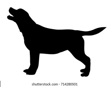 vector, isolated silhouette dog standing