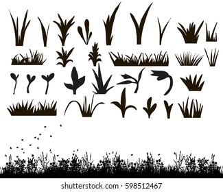 Vector, isolated, silhouette of grass