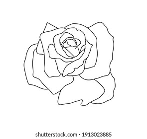 Vector isolated simple rose blossom drawing. Colorless black and white contour outline sketch rose shape. Tiny simple small rose tattoo.