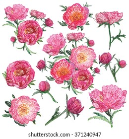 Vector isolated stylized embroidery flowers decorations set. Vintage stitching embroidery rose peony flowers pink peonies on white background. Beautiful embroidery floral isolated decorative elements