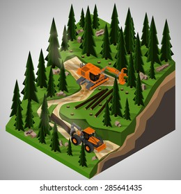 Vector isometric illustration of a feller-buncher and  skidder at logging operations. Equipment for forestry industry.