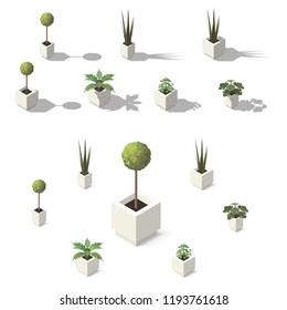 Vector isometric office plants. Indoor house plants set for interior decor.