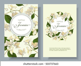 Vector jasmine flowers banner. Design for tea, natural cosmetics, beauty store, organic health care products, perfume, essential oil, homeopathy, aromatherapy. With place for text