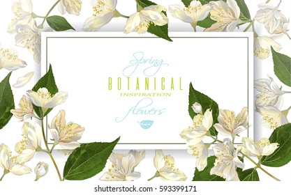 Vector jasmine flowers horizontal banner. Design for tea, natural cosmetics, beauty store, health care products, perfume, essential oil, aromatherapy. Can be used as greeting card, wedding invitation